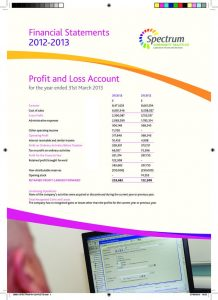 thumbnail of spectrum-cic-financial-statements-2012-2013